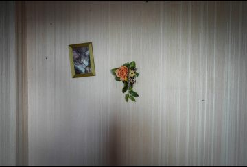 Presse - Victimes violences conjugales